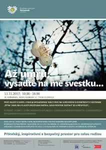 11.11. ke korenum - svestka -RC Hermanek